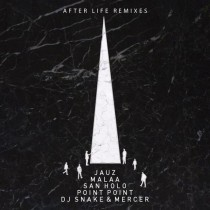 Tchami 'After Life' remixes