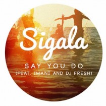 Sigala & DJ Fresh feat. Imani 'Say You Do' (Universal)